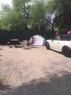 Mini Cooper in Phoenix